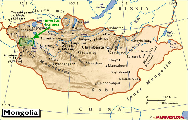 Book The Development Of The Chondrocranium Of Gallus Gallus 1989